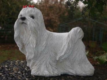 Malteser Hund Dekofigur lebensecht